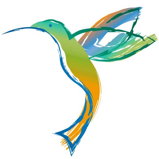 visioterra colibri